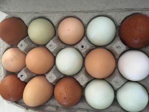 heart healthy eggs